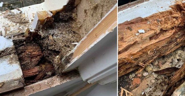rotten sash window and casement window sills for repair and renovation